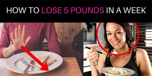 Best weight loss supplement oprah